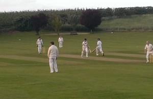 John Healey (76*) and Nick Page (28)  chasing down 182