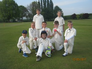 Bees U11 team May 2017
