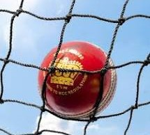 Cricket ball and Net