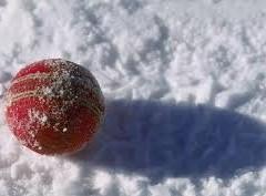 Snow cricket ball