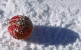 Snow cricket ball